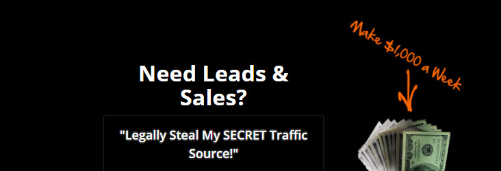 mydotcom review secret traffic hack