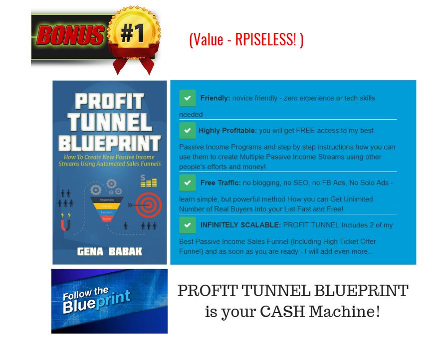 VIDEO PROFIT MACHINES 2.0 BONUS BUNDLE