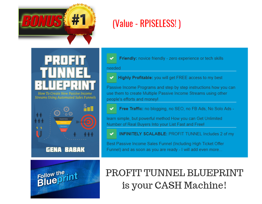 VIDEO PROFIT MACHINES 2.0 BONUS BUNDLE