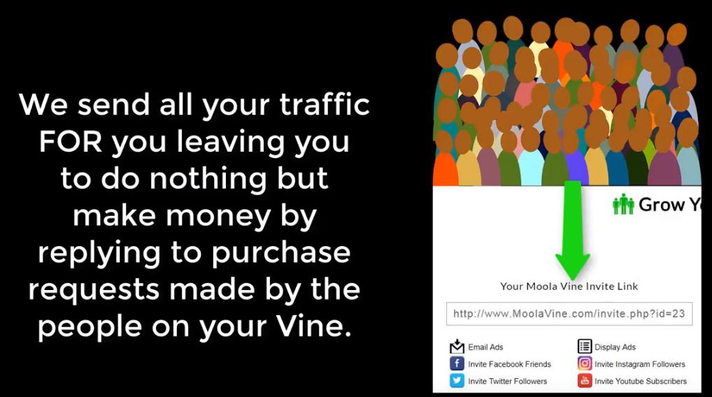 MoolaVine traffic coop explained