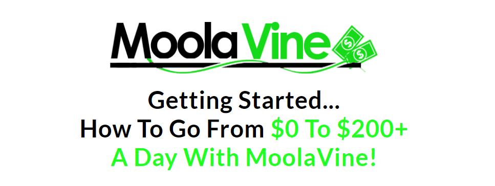 MoolaVine Review - how to go form zero to $200 a day with Moola Vine