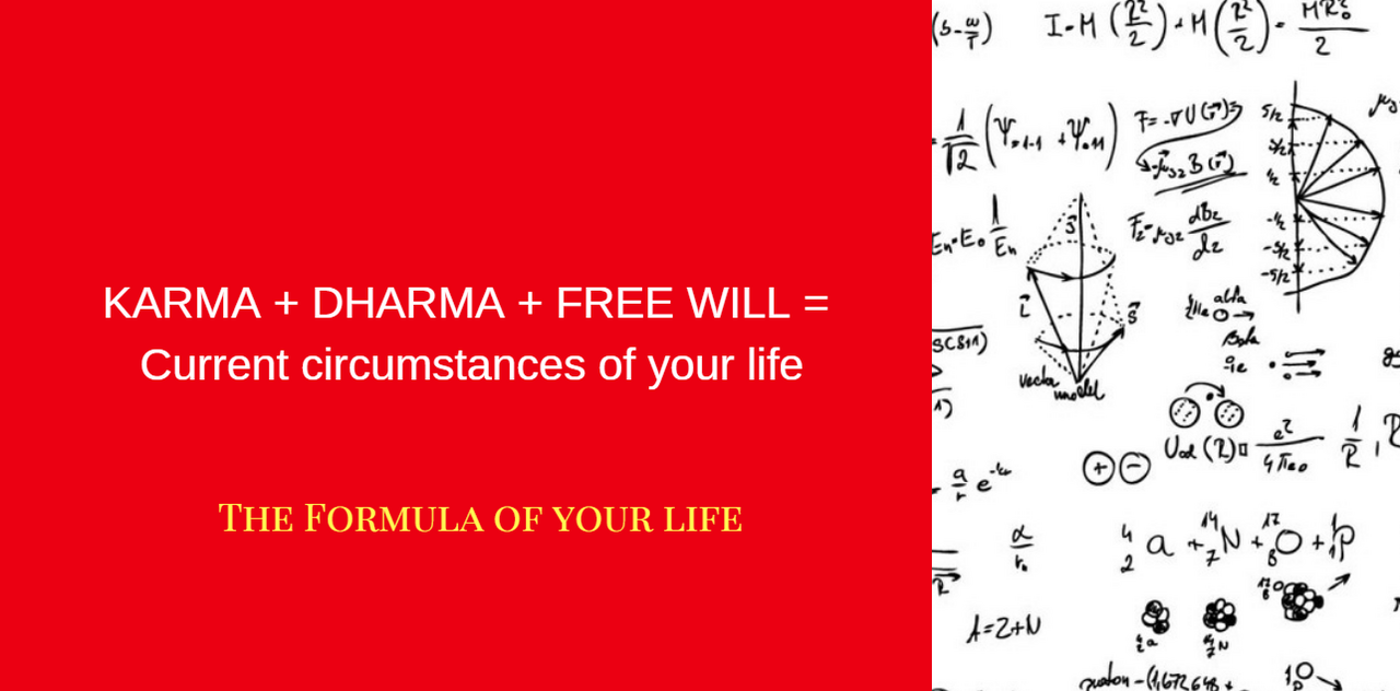 The formula of your life  by Gena Babak
